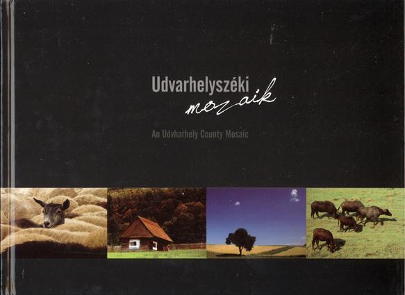 UDVARHELYSZÉKI MOZAIK - AN UDVARHELY COUNTY MOSAIC