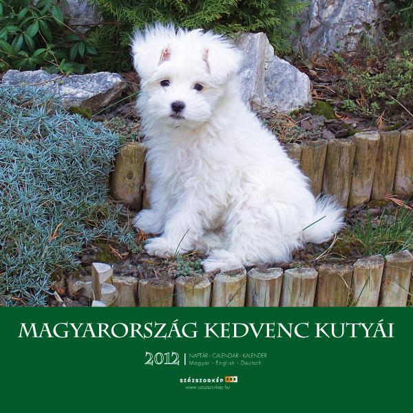 MAGYARORSZÁG KEDVENC KUTYÁI - NAPTÁR 2012 (22X22)