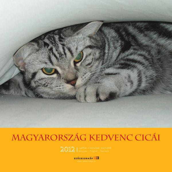 MAGYARORSZÁG KEDVENC CICÁI - NAPTÁR 2012 (22X22)