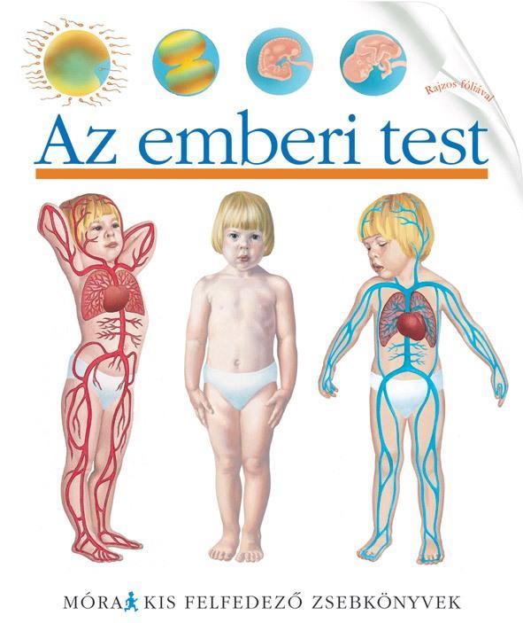 AZ EMBERI TEST - KIS FELFEDEZÕ ZSEBKÖNYVEK