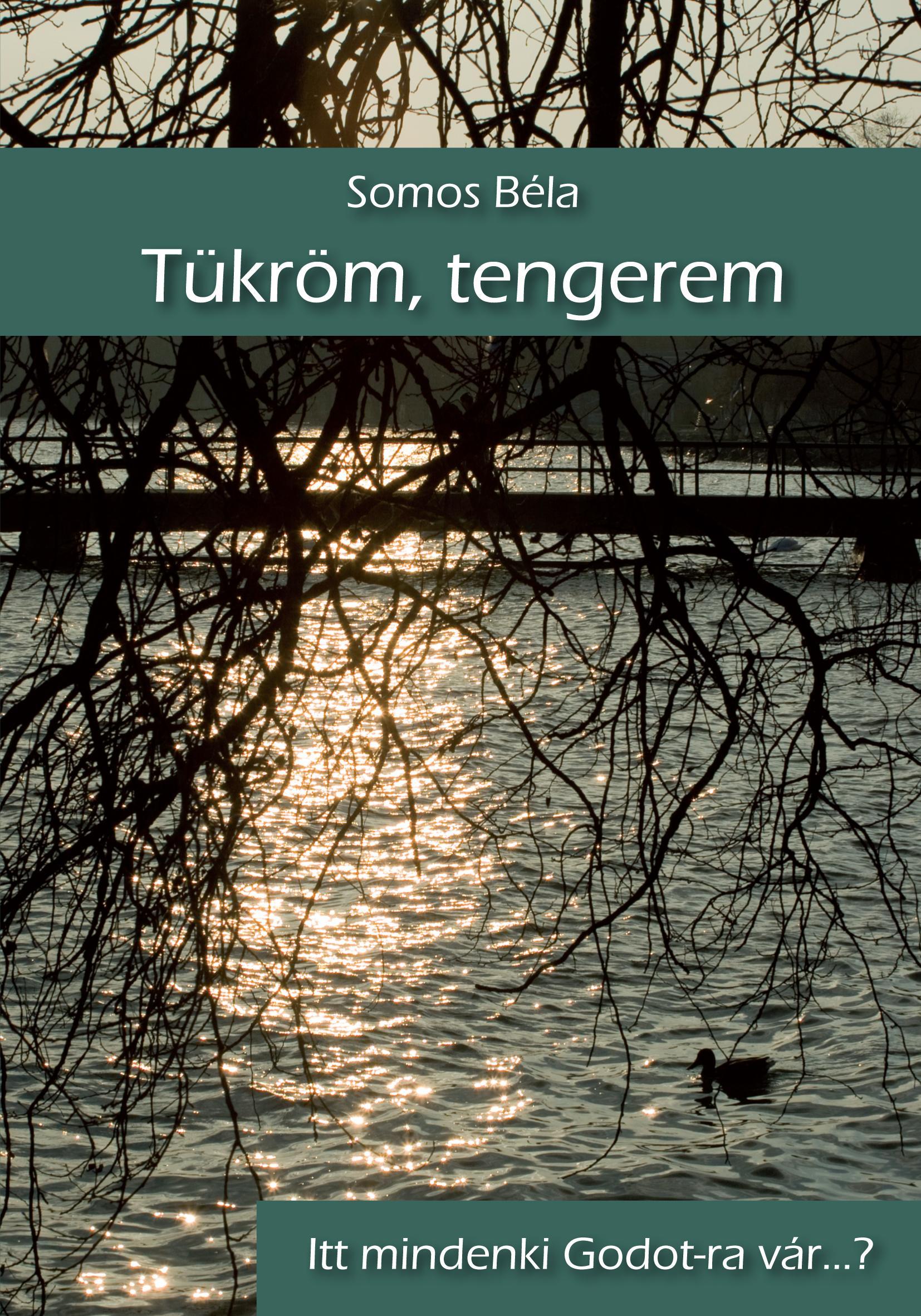 TÜKRÖM, TENGEREM