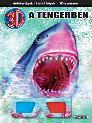 3D A TENGERBEN