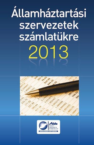 ÁLLAMHÁZTARTÁSI SZERVEZETEK SZÁMLATÜKRE 2013