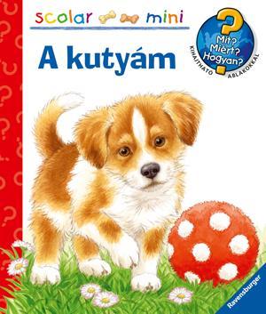 A KUTYÁM - SCOLAR MINI 29.