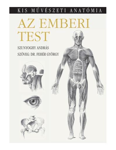 AZ EMBERI TEST - KIS MÛVÉSZETI ANATÓMIA - FÛZÖTT
