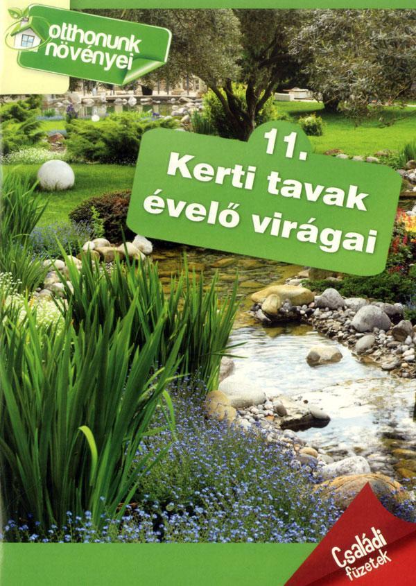 KERTI TAVAK ÉVELÕ VIRÁGAI - OTTHONUNK NÖVÉNYEI 11.