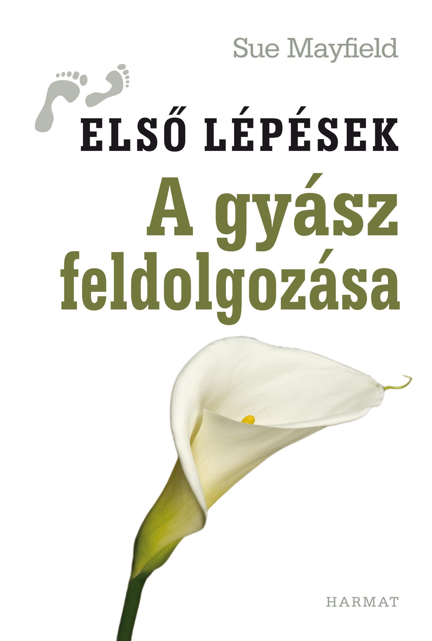 A GYÁSZ FELDOLGOZÁSA - ELSŐ LÉPÉSEK