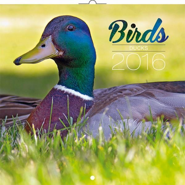 PG NAPTÁR BIRDS - DUCKS, 2016 30 X 30 CM