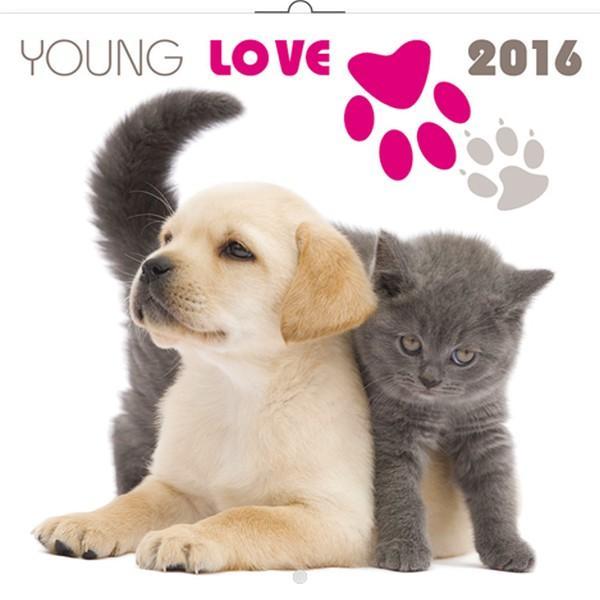 PG NAPTÁR YOUNG LOVE - KITTENS & PUPPIES 2016, 30 X 30 CM