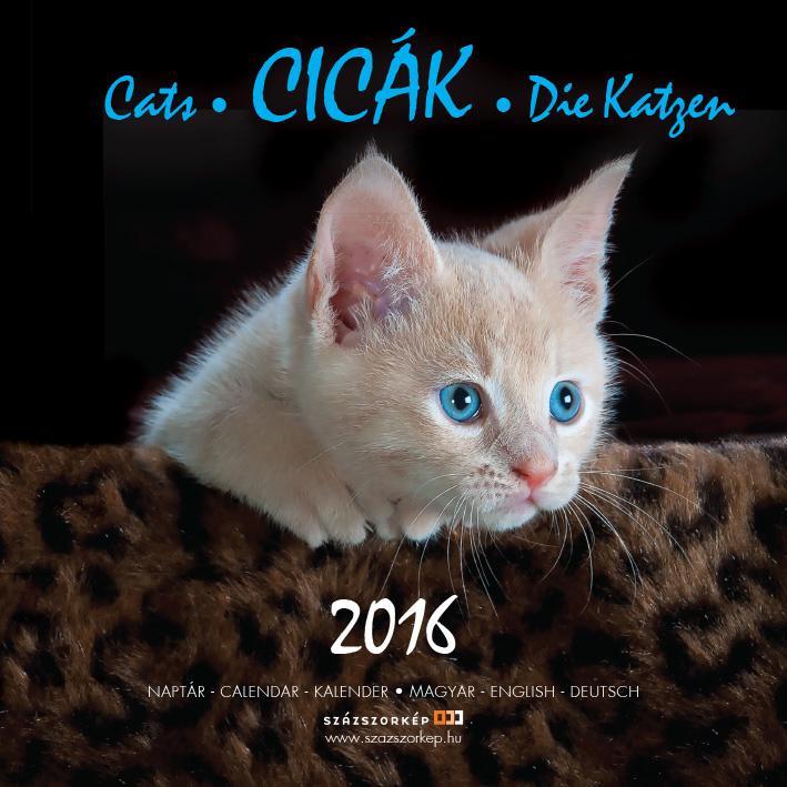 CICÁK - NAPTÁR 2016 (22X22 CM)