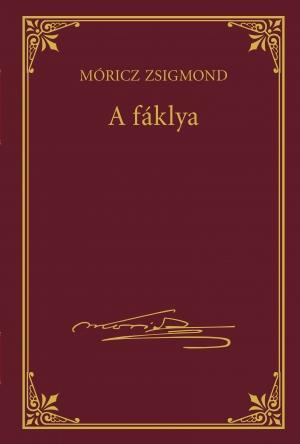A FÁKLYA - MÓRICZ ZSIGMOND SOROZAT 9.
