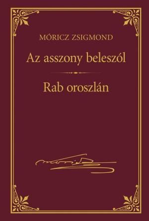 AZ ASSZONY BELESZÓL - RAB OROSZLÁN - MÓRICZ ZSIGMOND SOROZAT 19.