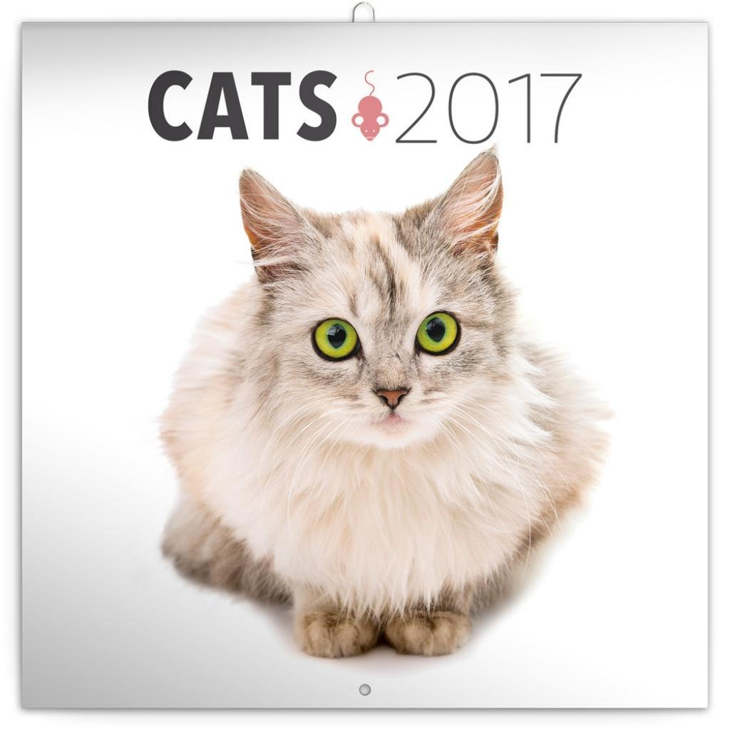 PG NAPTÁR - CATS, GRID CALENDAR 2017, 30 X 30 CM