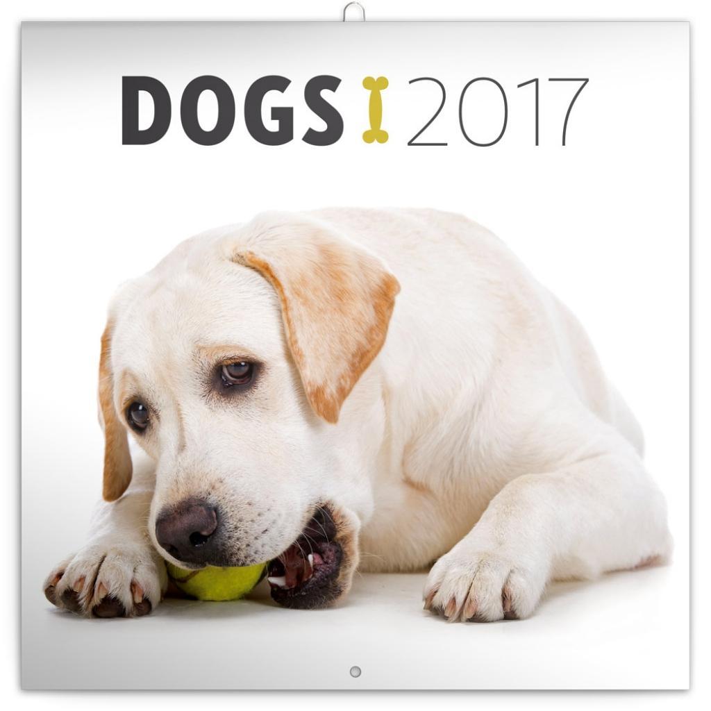 PG NAPTÁR - DOGS, GRID CALENDAR 2017, 30 X 30 CM