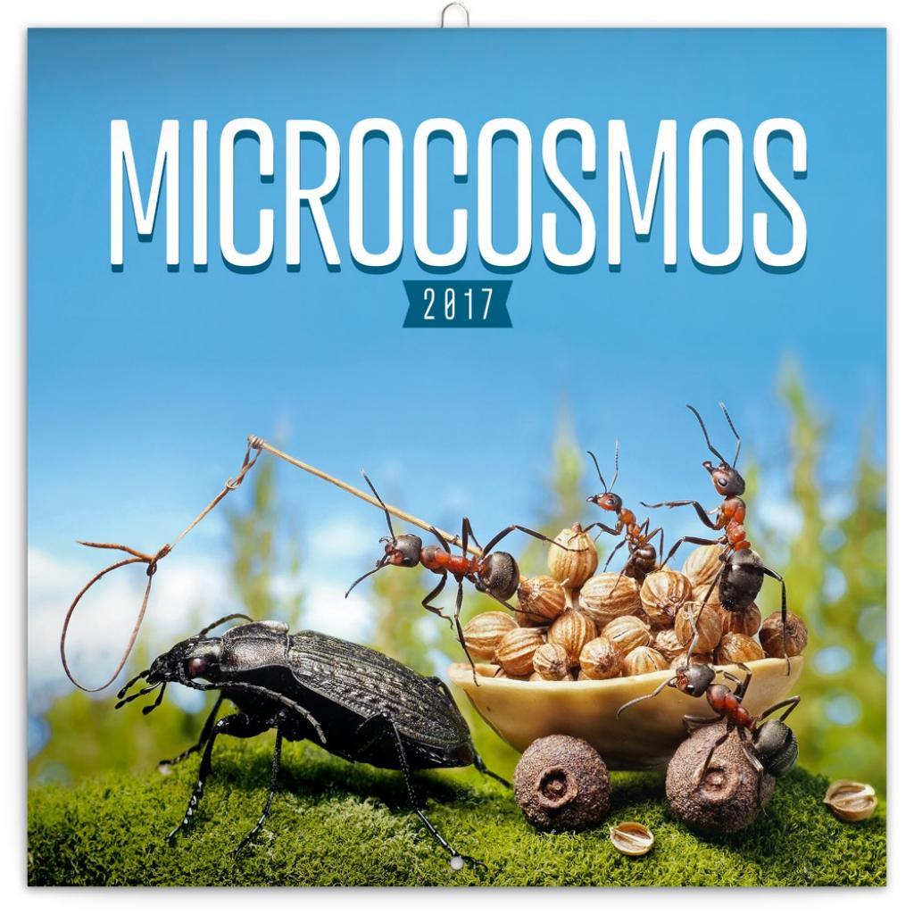 PG NAPTÁR - MICROCOSMOS, GRID CALENDAR 2017, 30 X 30 CM