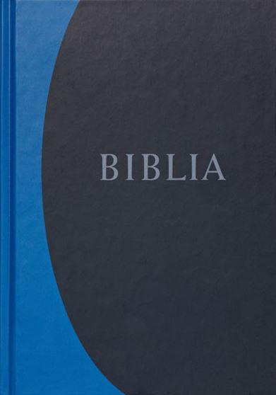 BIBLIA, REVIDEÁLT ÚJ FORDÍTÁS, NAGY MÉRETÛ, KEMÉNYTÁBLÁS