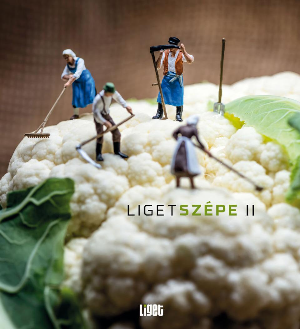 LIGETSZÉPE II.