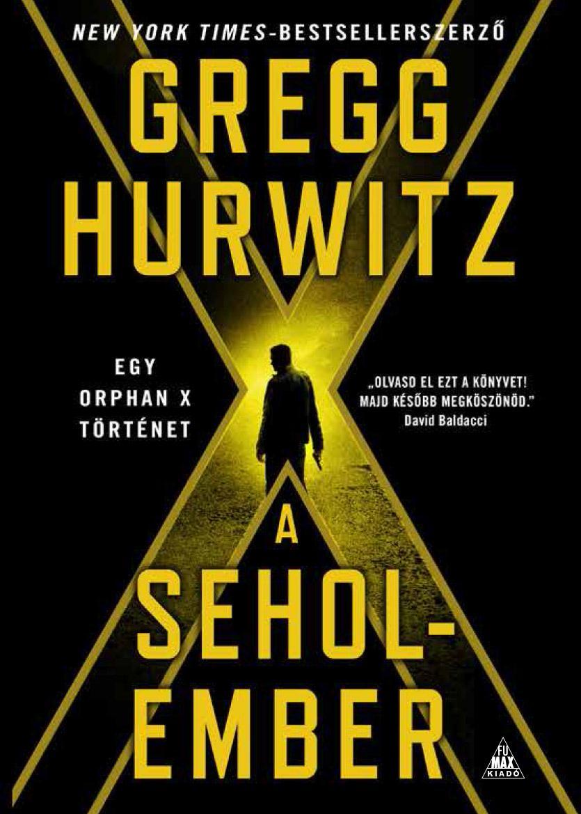 HURWITZ, GREGG - A SEHOLEMBER - ORPHAN X 2.