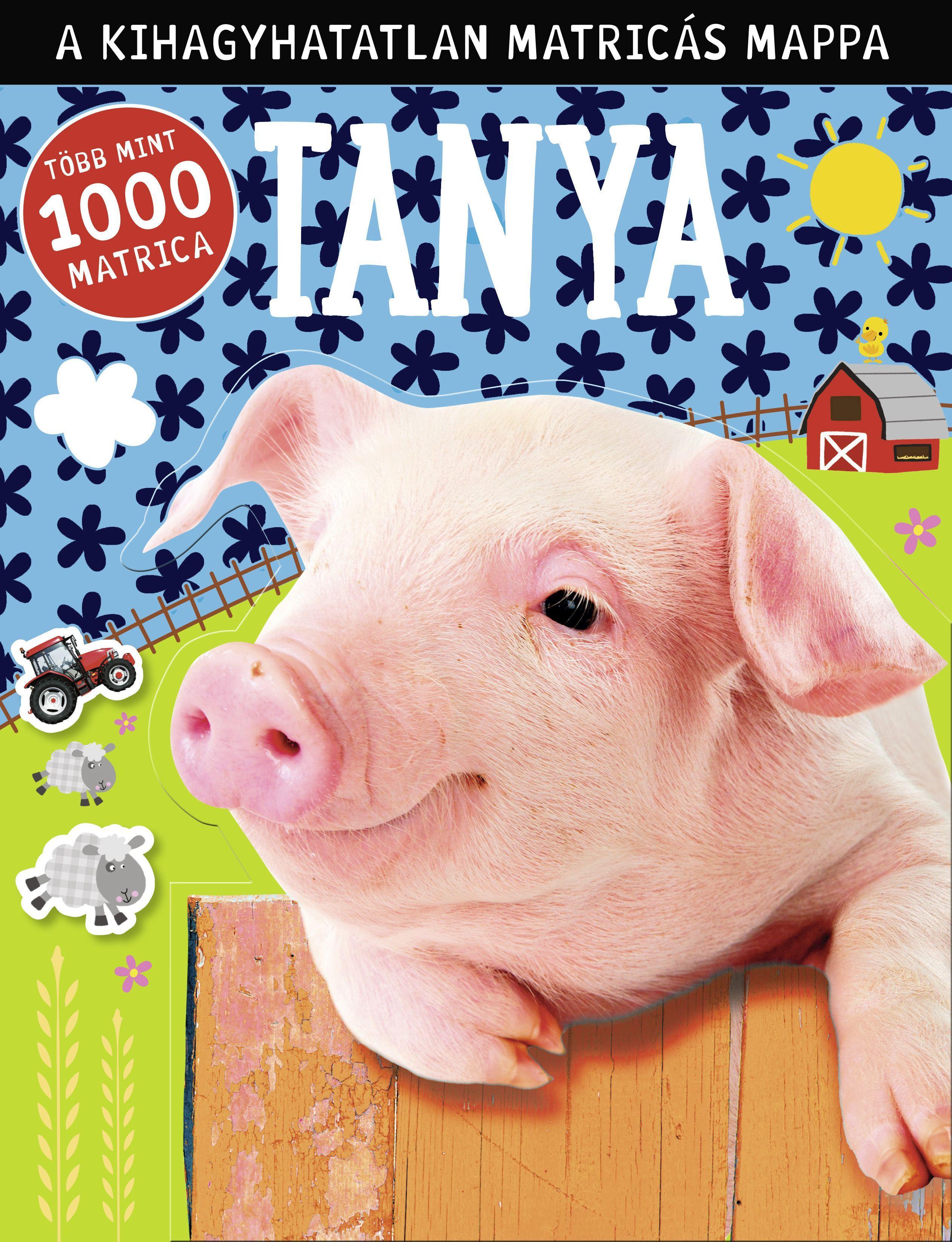 TANYA - A KIHAGYHATATLAN MATRICÁS MAPPA - TÖBB, MINT 1000 MATRICA