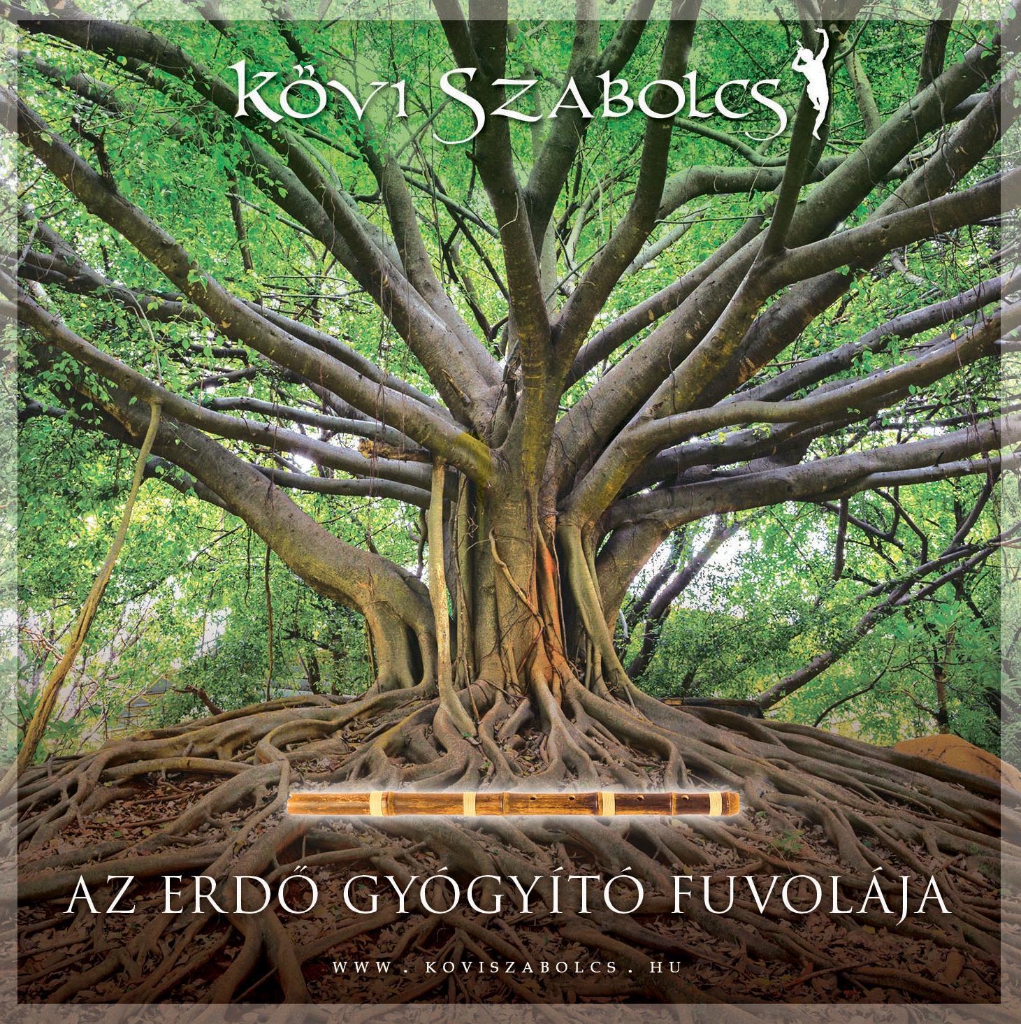 AZ ERDŐ GYÓGYÍTÓ FUVOLÁJA - CD -