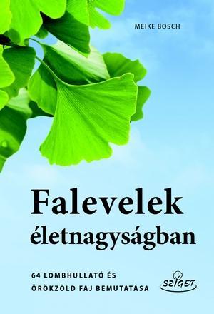 FALEVELEK ÉLETNAGYSÁGBAN