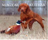 MAGYAR KUTYÁK NAPTÁR 2019 (22X22 CM)
