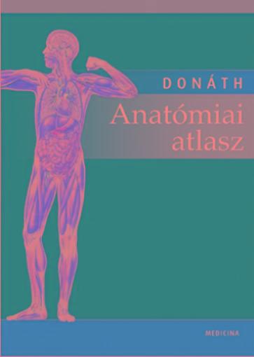 ANATÓMIAI ATLASZ - 12.KIAD. (2018)