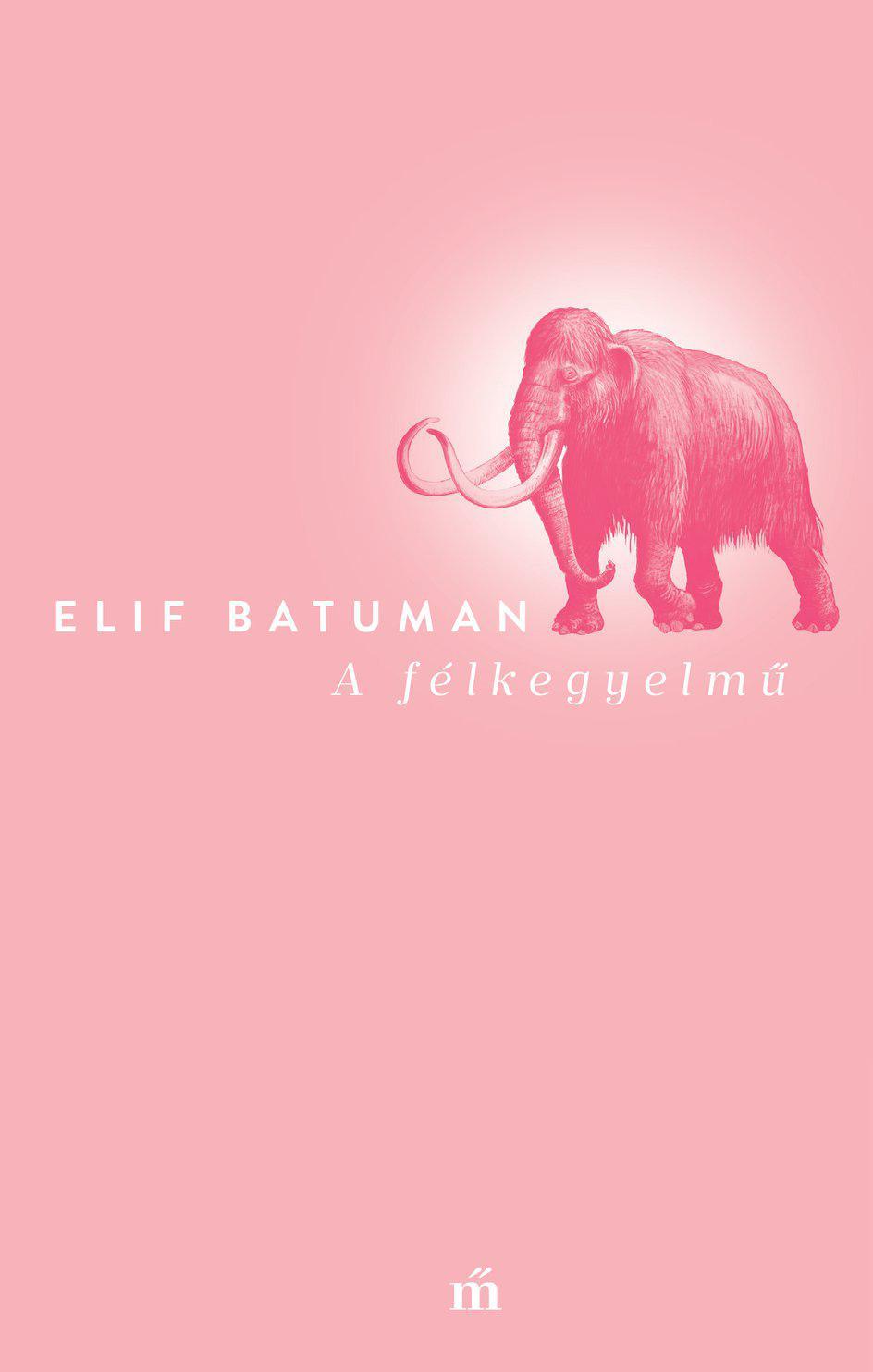 Elif Batuman: A félkegyelmű