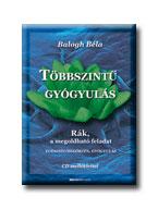 TÖBBSZINTŰ GYÓGYULÁS - CD-MELLÉKLETTEL