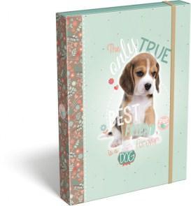 FÜZETBOX A/4 PET DOG 16 16246302